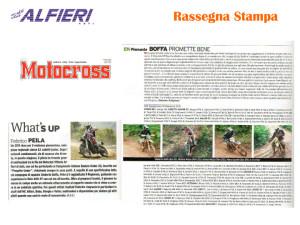 Resoconto Alfieri 2011-20